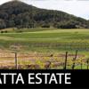 Coolangatta Winery