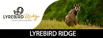 Lyrebird Ridge
